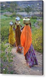 rural Rajasthan Acrylic Print by Joana Kruse