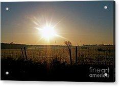 Rural Sunrise Acrylic Print by Sue Stefanowicz