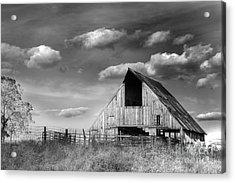 Rural Acrylic Print