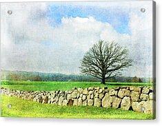 Rural Tranquility Acrylic Print by Randi Grace Nilsberg