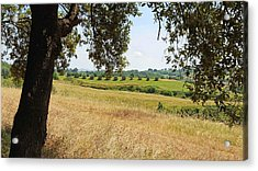 Acrylic Print featuring the photograph Rural Tuscany by Valentino Visentini