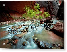 Rush At Narrows Acrylic Print by Edgars Erglis