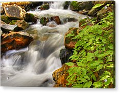 Rushing Water 3 Acrylic Print by Douglas Pulsipher