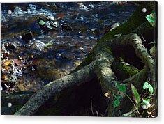 Acrylic Print featuring the photograph Rushing Waters Of Life by Wanda Brandon
