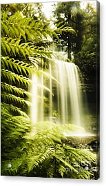Russell Falls Background Acrylic Print by Jorgo Photography - Wall Art Gallery