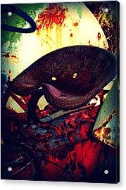 Rusted Seat Acrylic Print by Dana Blalock