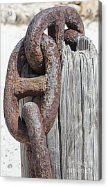 Rusted Ship Anchor Of The Caribbean Acrylic Print by David Letts