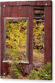 Acrylic Print featuring the photograph Rustic Autumn by Leland D Howard