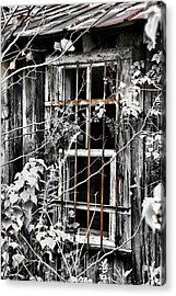 Rustic Barn Window Acrylic Print