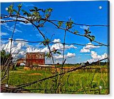 Rustic Frame Paint Acrylic Print by Steve Harrington
