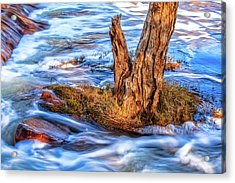 Acrylic Print featuring the photograph Rustic Island, Noble Falls by Dave Catley
