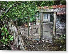 Acrylic Print featuring the photograph Rustic Old House In Galicia by Eduardo Jose Accorinti