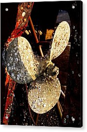 Acrylic Print featuring the photograph Rustic Propeller by Margie Avellino