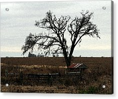 Rustic Acrylic Print by Rodger Mansfield