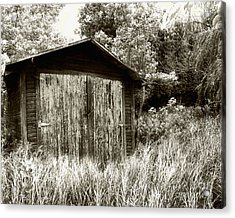 Rustic Shed Acrylic Print by Perry Webster