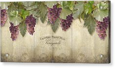 Rustic Vineyard - Pinot Noir Grapes Acrylic Print