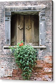 Rustic Wooden Window Shutters Acrylic Print by Donna Corless