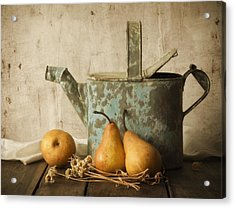 Acrylic Print featuring the photograph Rustica by Amy Weiss