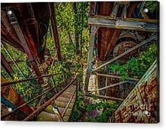 Rusty Climb Acrylic Print