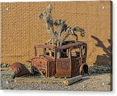 Rusty In The Desert Acrylic Print