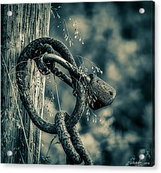 Rusty Lock And Chain Acrylic Print by Ken Morris