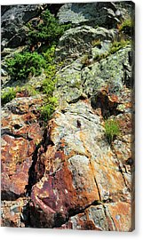 Rusty Rock Face Acrylic Print