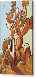 Sabar Cactus Acrylic Print