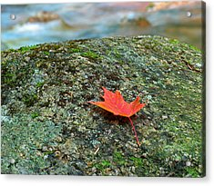 Sabbaday Brook Acrylic Print by Juergen Roth