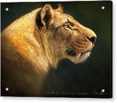 Sabertooth- Homotherium Crenatidens Acrylic Print