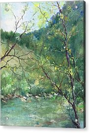 Sabino Canyon Acrylic Print by Robin Miller-Bookhout