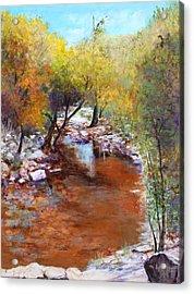 Sabino Canyon Scenes Acrylic Print