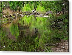 Acrylic Print featuring the photograph Sabino Reflection Op53 by Mark Myhaver