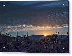 Acrylic Print featuring the photograph Sabino Sunrise by Dan McManus