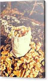 Sack Of Country Walnuts Acrylic Print
