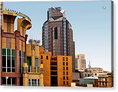 Acrylic Print featuring the photograph Sacramento Bird Go Round by Larry Darnell