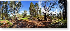 Acrylic Print featuring the photograph Sacred Canyon, Flinders Ranges by Bill Robinson