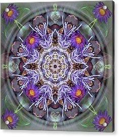 Sacred Emergence Acrylic Print