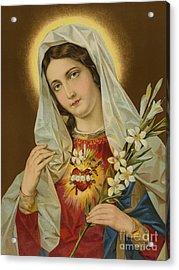 Sacred Heart Of The Virgin Mary Acrylic Print by European School