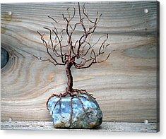 Sacred Oak Acrylic Print