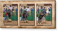 Saddle Bronc 1 Rider 0 Acrylic Print by Priscilla Burgers