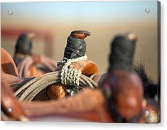 Saddle Horns Acrylic Print by Todd Klassy