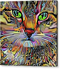 Sadie The Colorful Abstract Cat Acrylic Print