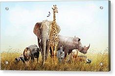 Safari Animals In Africa Composite Acrylic Print