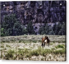 Safe In The Valley Acrylic Print by Elizabeth Eldridge