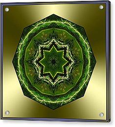 Sago Palm Star Acrylic Print by Michele Kaiser