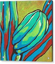 Saguaro 15 Acrylic Print
