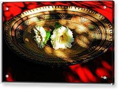 Saguaro Blossoms Acrylic Print