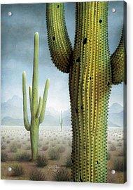 Saguaro Cactus Landscape Acrylic Print