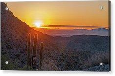 Saguaro Sunrise Acrylic Print