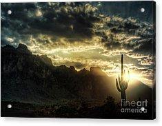 Saguaro Sunrise  Acrylic Print by Saija  Lehtonen